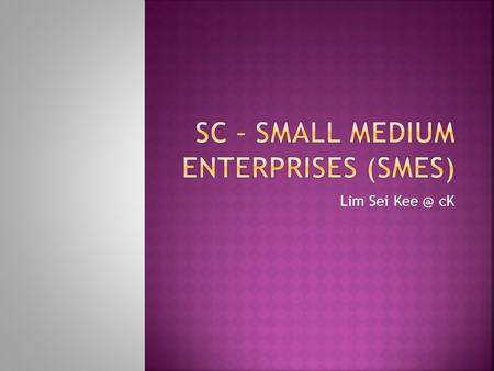 Lim Sei cK.  SME stands for Small to Medium Enterprise.  Different countries define SMEs differently.  SMALL-and medium-sized enterprises (SMEs)