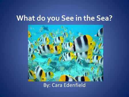 What do you See in the Sea? By: Cara Edenfield. What do you See in the Sea? Do you see fish in the sea?