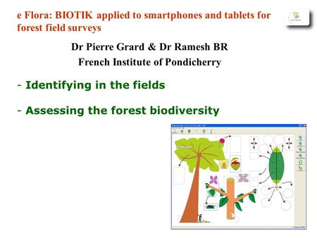 - Identifying in the fields - Assessing the forest biodiversity e Flora: BIOTIK applied to smartphones and tablets for forest field surveys Dr Pierre Grard.