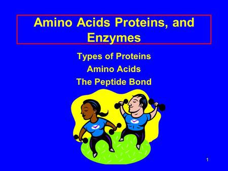 1 Amino Acids Proteins, and Enzymes Types of Proteins Amino Acids The Peptide Bond.