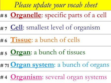 Please update your vocab sheet