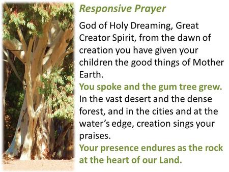 Responsive Prayer God of Holy Dreaming, Great Creator Spirit, from the dawn of creation you have given your children the good things of Mother Earth.