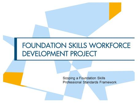 Scoping a Foundation Skills Professional Standards Framework.