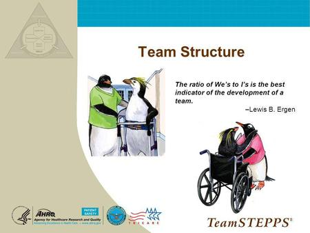 Team Structure The ratio of We's to I's is the best indicator of the development of a team. –Lewis B. Ergen NEXT: ®