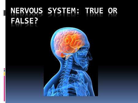 Humans only use 10% of their brain or less  False!