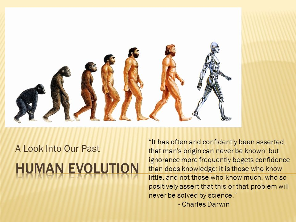 """A Look Into Our Past """"It has often and confidently been asserted, that  man's origin can never be known: but ignorance more frequently begets  confidence. - ppt download"""
