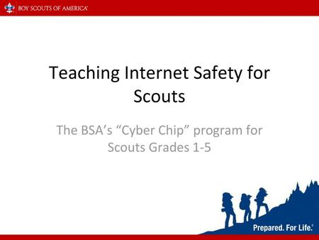 graphic regarding Bsa Cyber Chip Green Card Printable identified as Instruction Web Security for Scouts (What, Why, Who and How