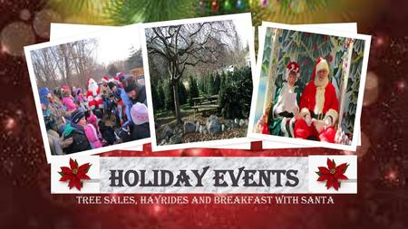 Tree Sales, Hayrides and Breakfast with Santa