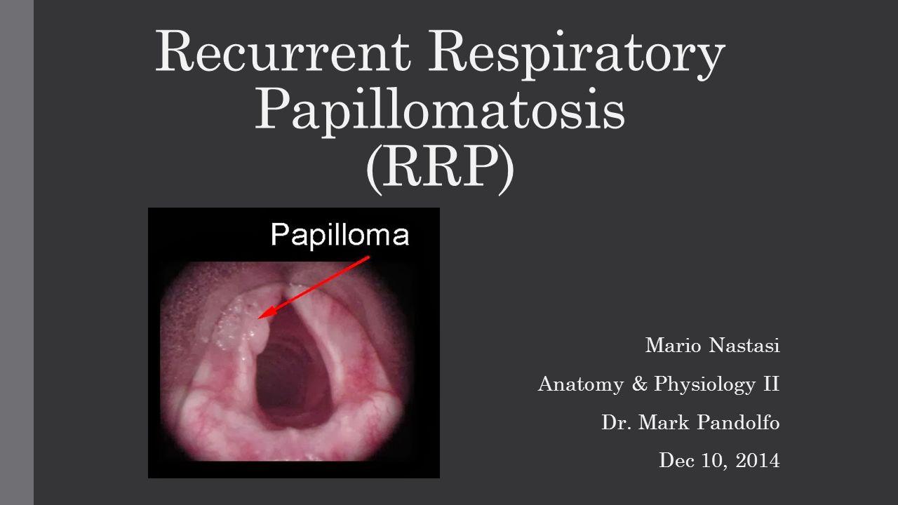 Laryngeal papillomatosis human papillomavirus, Papilloma Viruses