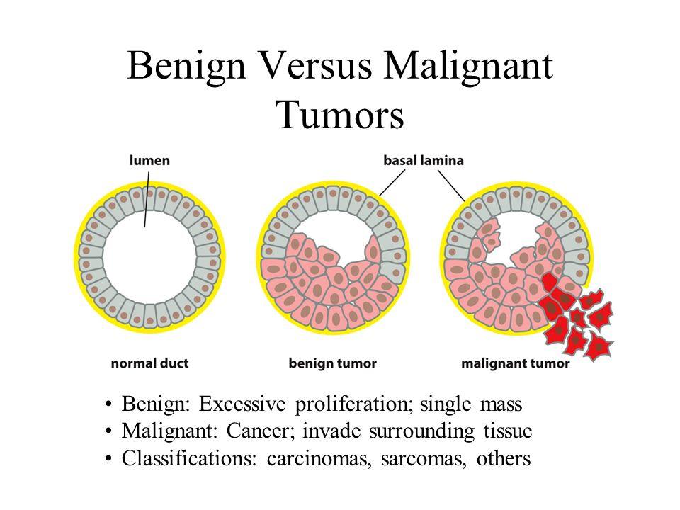 cancer types benign malignant