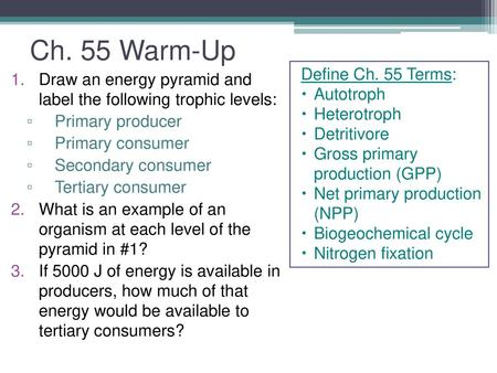 ECOSYSTEMS AND ENERGY FLOW CH 55 Energy flows through ecosystems