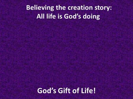 God's Gift of Life! Believing the creation story: All life is God's doing.