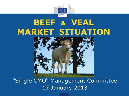 BEEF & VEAL MARKET SITUATION Single CMO Management Committee 17 January 2013.