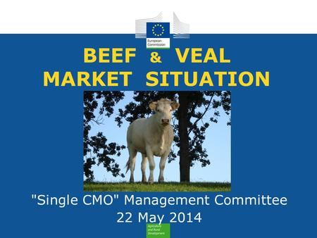BEEF & VEAL MARKET SITUATION Single CMO Management Committee 22 May 2014.