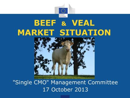 BEEF & VEAL MARKET SITUATION Single CMO Management Committee 17 October 2013.