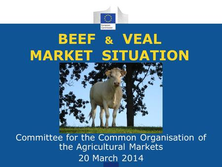 BEEF & VEAL MARKET SITUATION Committee for the Common Organisation of the Agricultural Markets 20 March 2014.
