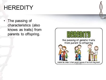 HEREDITY The passing of characteristics (also knows as traits) from parents to offspring.