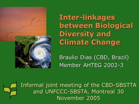 Inter-linkages between Biological Diversity and Climate Change Braulio Dias (CBD, Brazil) Member AHTEG 2002-3 Informal joint meeting of the CBD-SBSTTA.