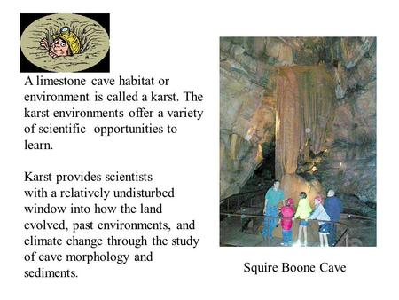 A limestone cave habitat or environment is called a karst. The karst environments offer a variety of scientific opportunities to learn. Karst provides.