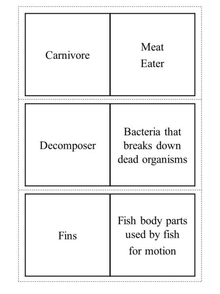 Fins Fish body parts used by fish for motion Decomposer Bacteria that breaks down dead organisms Carnivore Meat Eater.