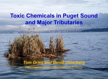 Toxic Chemicals in Puget Sound and Major Tributaries Tom Gries and David Osterberg Washington State Department of Ecology.