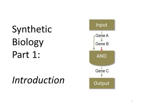 Synthetic Biology Part 1: Introduction Input Output Gene A Gene B Gene C 1.