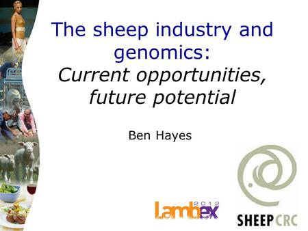 The sheep industry and genomics: Current opportunities, future potential Ben Hayes.