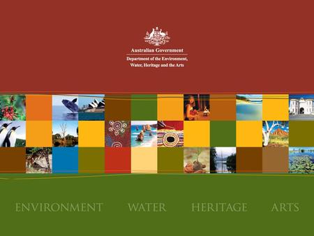 Commonwealth Government links to the National Biodiversity Strategy Overview of: the Commonwealth Government's constitutional responsibility for the environment.