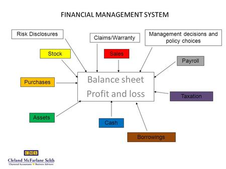 FINANCIAL MANAGEMENT SYSTEM Balance sheet Profit and loss Sales Claims/Warranty Stock Payroll Purchases Assets Cash Taxation Borrowings Risk DisclosuresManagement.