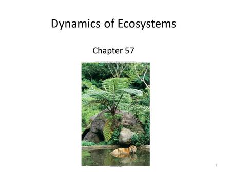 1 Dynamics of Ecosystems Chapter 57. 2 Flow of Energy in Ecosystems First Law of Thermodynamics: energy is neither created nor destroyed; it changes forms.