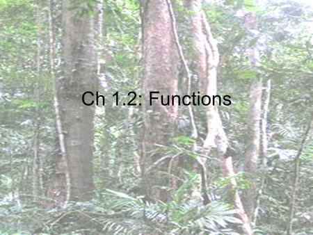 Ch 1.2: Functions. DEFINITIONS Relation: a set of ordered pairs or 2 quantities related by a rule Function: a relation in which an element of the domain.