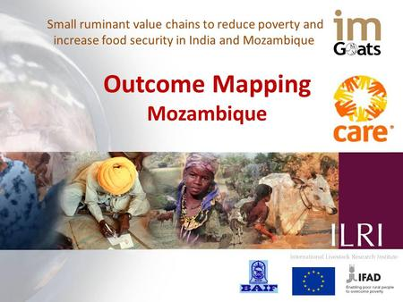 Small ruminant value chains to reduce poverty and increase food security in India and Mozambique Outcome Mapping Mozambique.