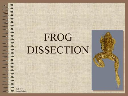 FROG DISSECTION Fall 2000 Jenna Hellack.