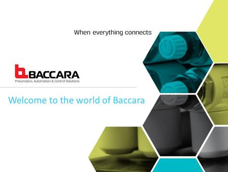 Welcome to the world of Baccara. is a proud manufacturer of high quality solenoid valves and system solutions with operations in the USA, Israel, Spain,