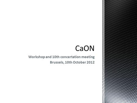 Workshop and 10th concertation meeting Brussels, 10th October 2012.