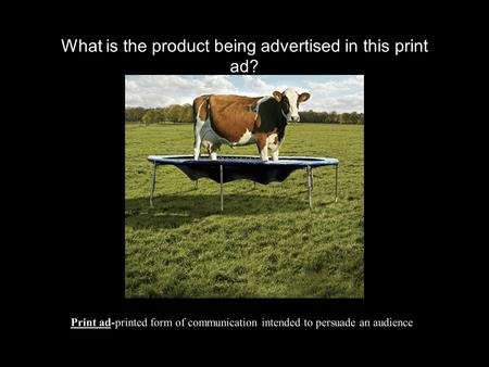 What is the product being advertised in this print ad? Print ad-printed form of communication intended to persuade an audience.
