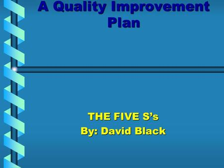 A Quality Improvement Plan THE FIVE S's By: David Black.