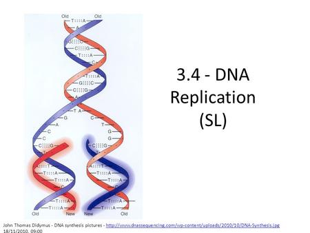 3.4 - DNA Replication (SL) John Thomas Didymus - DNA synthesis pictures - http://www.dnassequencing.com/wp-content/uploads/2010/10/DNA-Synthesis.jpg 18/11/2010.