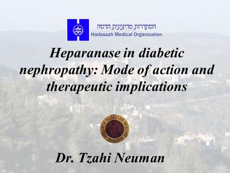 Heparanase in diabetic nephropathy: Mode of action and therapeutic implications Dr. Tzahi Neuman.
