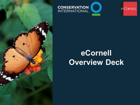 ECornell Overview Deck. What is eCornell? Online e-Learning courses from Cornell University's Johnson Graduate School of Management Instructor-Led, Interactive.
