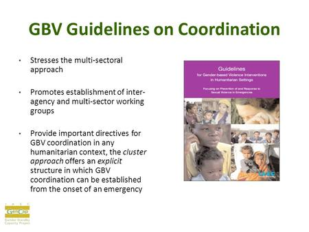 GBV Guidelines on Coordination Stresses the multi-sectoral approach Promotes establishment of inter- agency and multi-sector working groups Provide important.