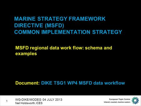 1 MARINE STRATEGY FRAMEWORK DIRECTIVE (MSFD) COMMON IMPLEMENTATION STRATEGY MSFD regional data work flow: schema and examples Document: DIKE TSG1 WP4 MSFD.