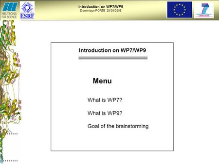 Introduction on WP7/WP9 Dominique PORTE 29/05/2008 Menu What is WP7? What is WP9? Goal of the brainstorming Introduction on WP7/WP9.