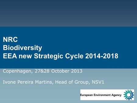 NRC Biodiversity EEA new Strategic Cycle 2014-2018 Copenhagen, 27&28 October 2013 Ivone Pereira Martins, Head of Group, NSV1.