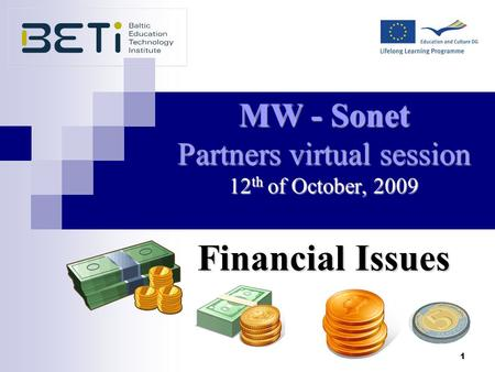 1 MW - Sonet Partners virtual session 12 th of October, 2009 Financial Issues.