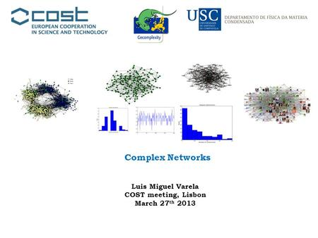 Complex Networks Luis Miguel Varela COST meeting, Lisbon March 27 th 2013.