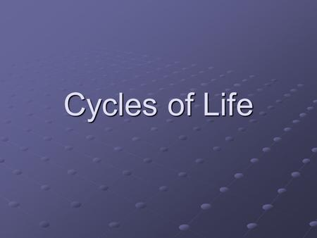 Cycles of Life.