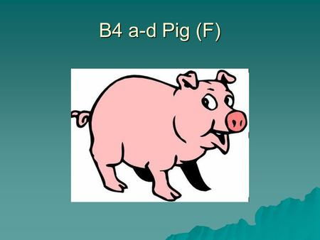 B4 a-d Pig (F).  Name the pores in the bottom of a leaf.