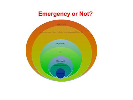 Emergency or Not?. UNSCHEDULED CARE INSIGHT PROJECT A Report by the BME Health Forum Commissioned by the NHS Central London CCG.