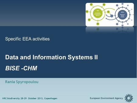 1 Specific EEA activities Data and Information Systems II BISE -CHM Rania Spyropoulou NRC biodiversity 28-29 October 2013, Copenhagen.